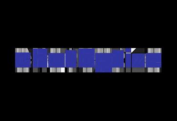chatbotize-logo